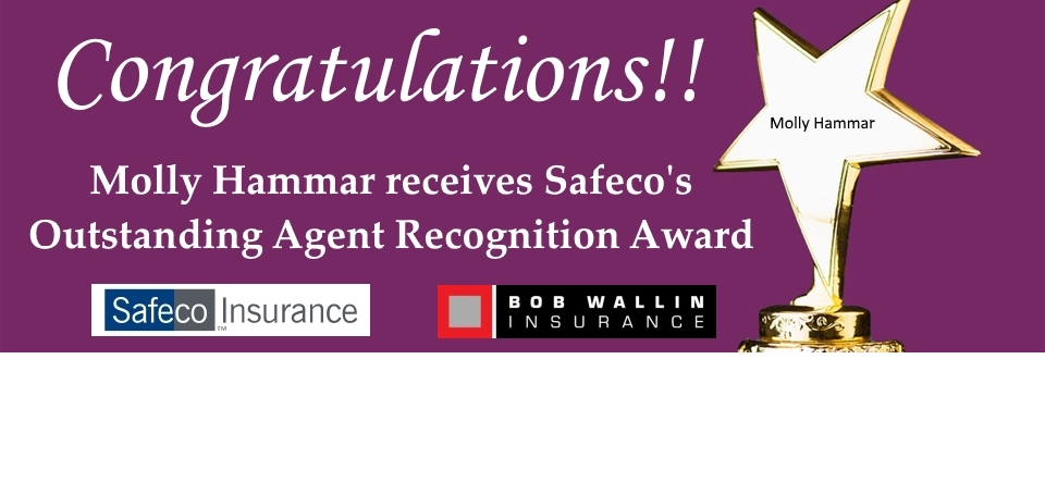 Outstanding Agent Award