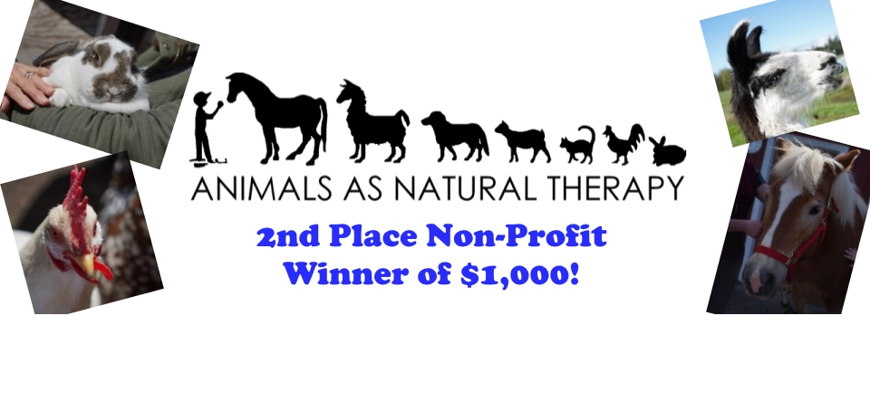 Animals as Natural Therapy